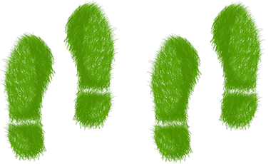 green-steps.png